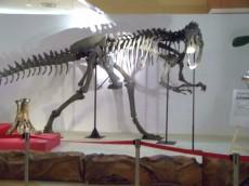 大恐竜展8